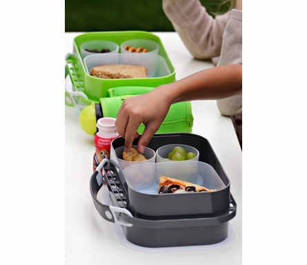 Personalized Sharks Lunch Box - Gray