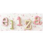 Pink and Green Fabric Letters
