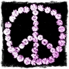 Pink Peace Canvas Wall Art