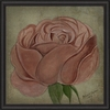 Pink Rose Framed Wall Art