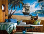 Prepasted Wall Murals for Boys