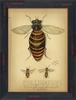 Pollination Framed Wall Art