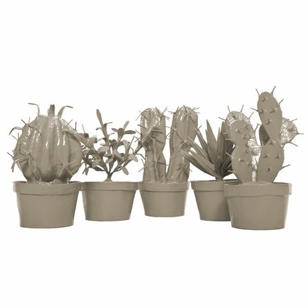 Potted Cactus Set