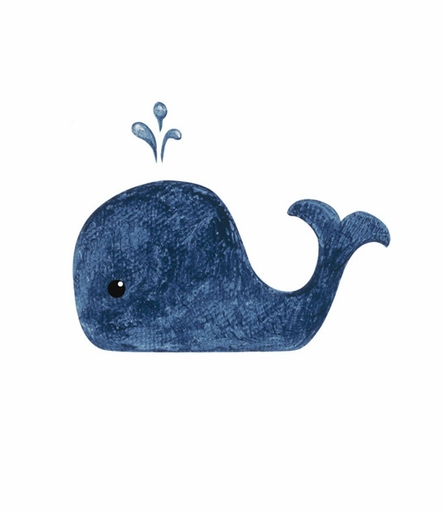 Preppy Whale Canvas Birth Announcement in Sea and Sand