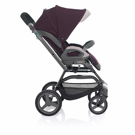 Quad Stroller - Purple