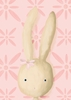 Rae the Bunny in Powder Pink Canvas Wall Art