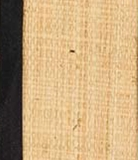 Raffia with Black Trim - A