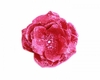 Raspberry Rose Sequin Hair Bloom