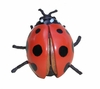 Red Lady Bug Drawer Pull