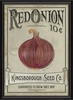 Red Onion Seeds Framed Wall Art