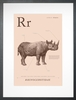 Rhino in Sand Art Print