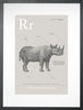 Rhino in Warm Grey Art Print