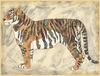 Royal Tiger Canvas Reproduction
