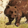 Rustic Bear Canvas Wall Art