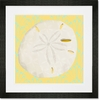 Sand Dollar on Yellow Framed Art Print