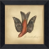 Scarlet Tanager Bird Framed Wall Art