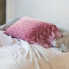 Silk Velvet Embroidered Decorative Pillowcase