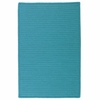 Simply Home Rug in Turquoise
