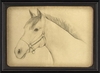 Sketch of a Horse Framed Wall Art