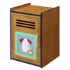 Sports Small Locker Cabinet