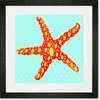 Star Blue Framed Art Print