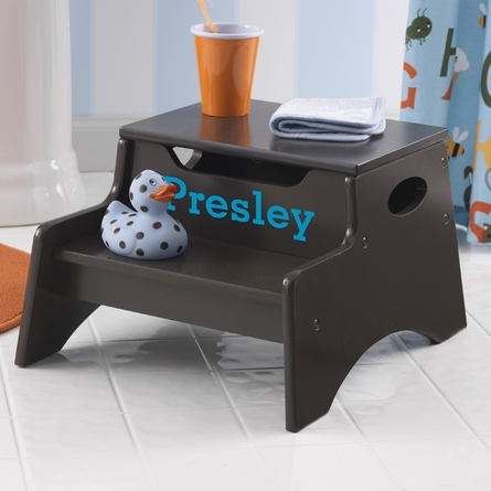Step Stool With Storage in Chocolate