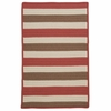 Stripe It Rug in Terra Cotta