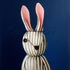 Striped Rabbit Canvas Wall Art
