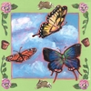 Summer Butterflies Canvas Wall Art