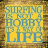 Surfing Is Not A Hobby Canvas Reproduction