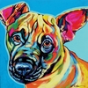 Sweet Mutt Dog Wall Art