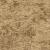 Tan Vintage Map Wallpaper