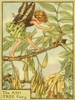 The Ash Tree Fairy Canvas Reproduction