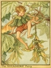 The Sycamore Fairy Canvas Reproduction