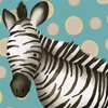 Timmy the Zebra Canvas Wall Art
