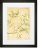 Toile Birdies in Flight - Green Framed Art Print
