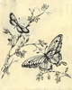 Toile Butterflies - Cream & Black - Canvas Wall Art