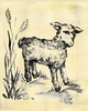 Toile Lamb - Cream & Black - Canvas Wall Art