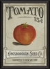 Tomato Seeds Framed Wall Art