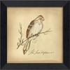 Tree Sparrow Bird Framed Wall Art