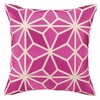 Trina Turk Mojave Embroidered Pillow in Pink
