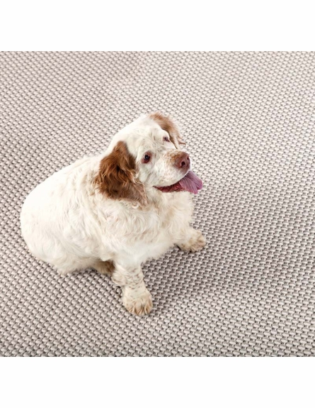 Two Tone Rope Indoor/Outdoor Rug in Platinum and Ivory