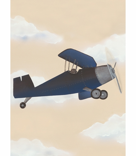 Vintage Plane I Canvas Reproduction