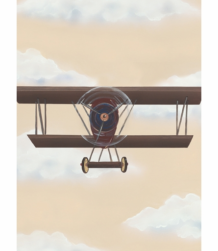 Vintage Plane II Canvas Reproduction