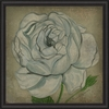 White Rose Framed Wall Art