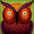 Wild Owl Canvas Reproduction