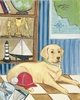 Yellow Lab Canvas Reproduction