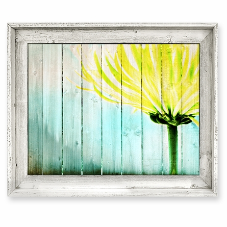 Yellow Mum & Fence Framed Canvas Wall Art