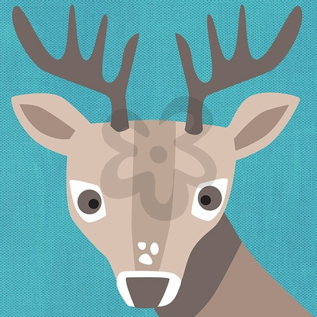 Young Buck Canvas Wall Art