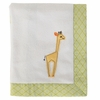 Zig Zag Zoo Plush Applique Baby Blanket